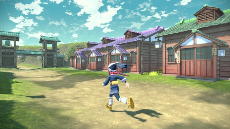 village pokémon
